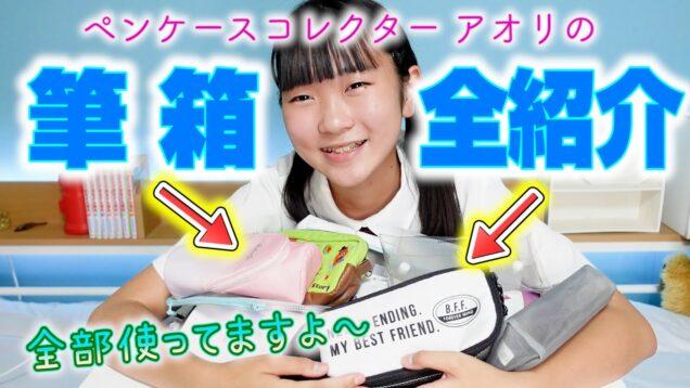 【筆箱前紹介】ペンケースコレクターの私アオリが持っているオススメ商品ご紹介!