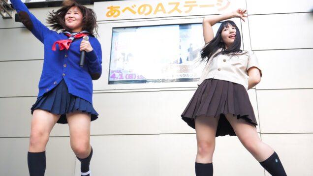 青山外苑前学院 「シュレーディンガーのネコ」アイドル Japanese girls Idol group [4K]