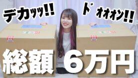 【総額6万円分】の巨大なダンボールが届いたから開封するぞ!!!!!